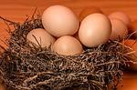 得する人損する人 失敗しない温泉卵と食パンをメロンパンに変身