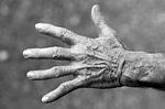 ビビット! 老けた手を若返らせる!手の洗い方や日焼け止めクリームの使い方